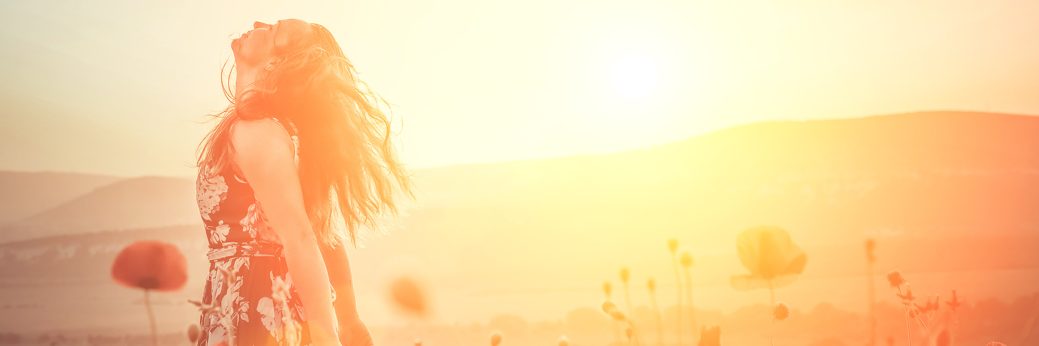 A woman in a field of flowers, the sun glowing from a distance.