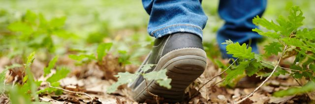 Image from the back of a man's feet walking through a forest on a footpath