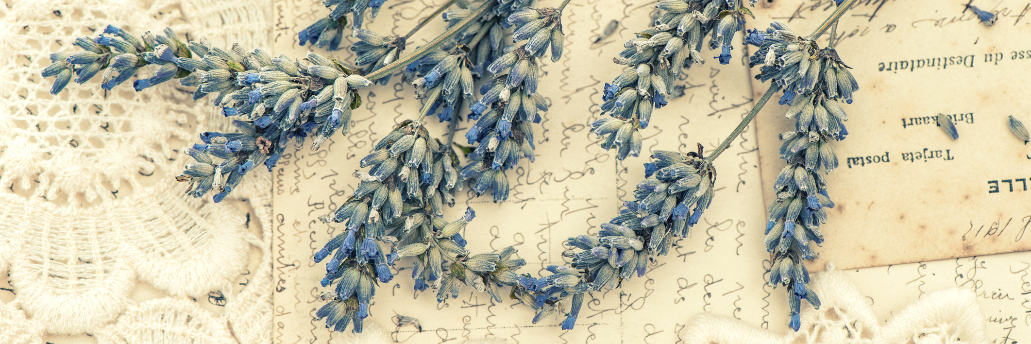 dried lavender flowers and vintage love post cards.
