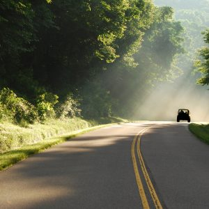 Truck on curvy road with rays of sunshine streaming through the green, lush trees.