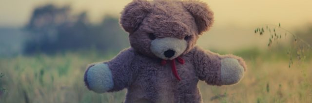 stuffed bear standing in middle of field at sunset in soft light