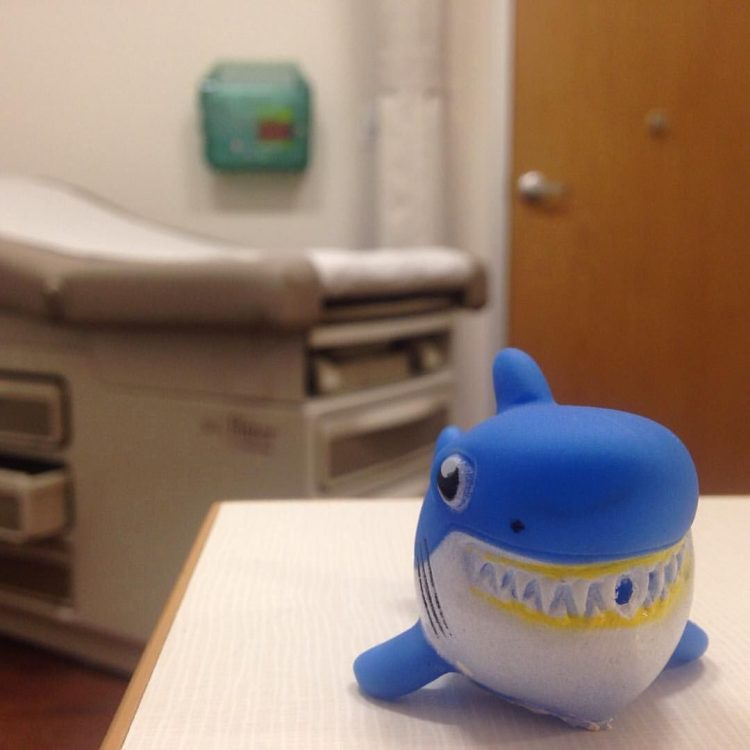 toy shark in a doctor's office