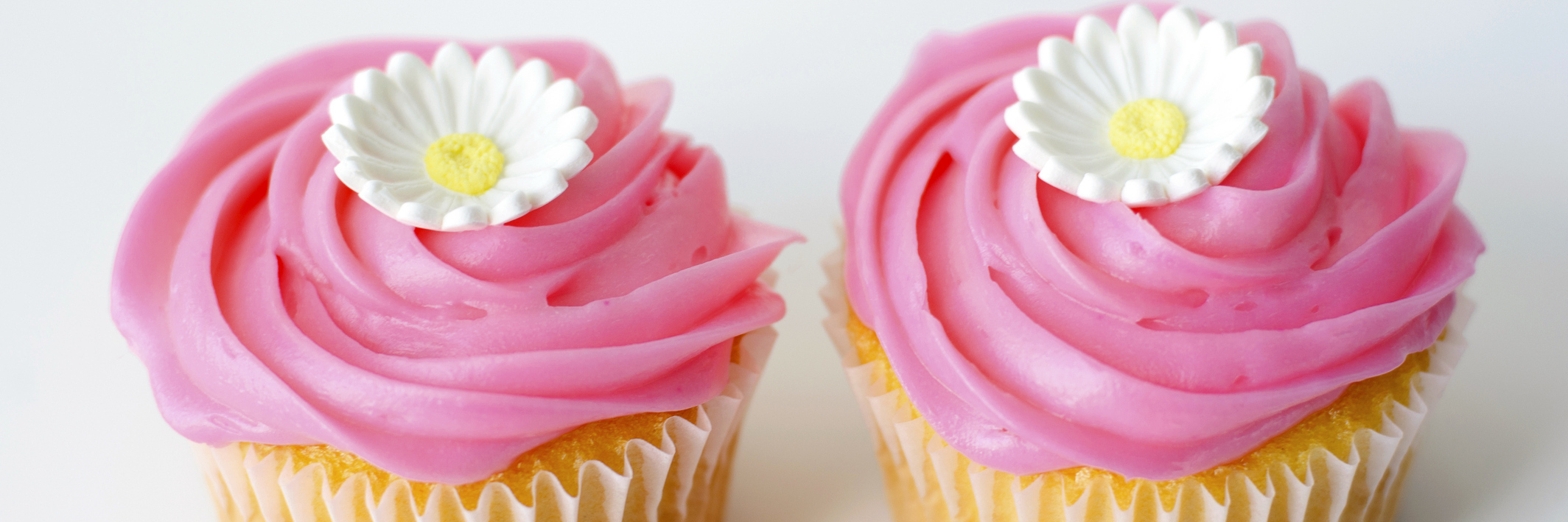two Pink cupcakes