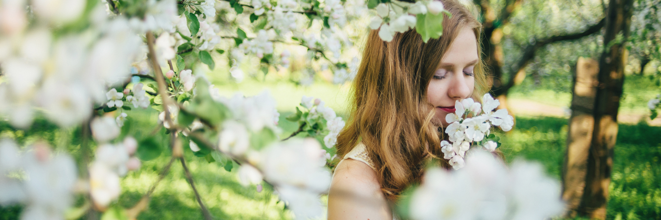 A girl in a white dress, in an apple orchard, smelling flowers.