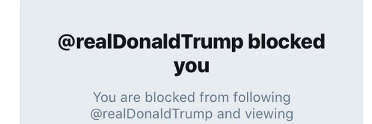 Laura Packard Trump block