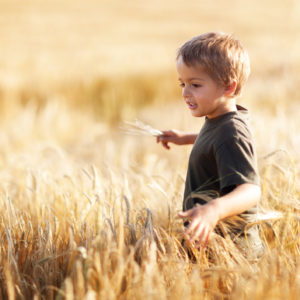 Boy in wheat field.