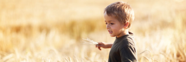 Boy in wheat field.