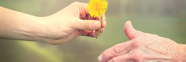 Senior woman sharing a flower with young girl