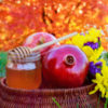 honey, apple and pomegranate for rosh hashanah