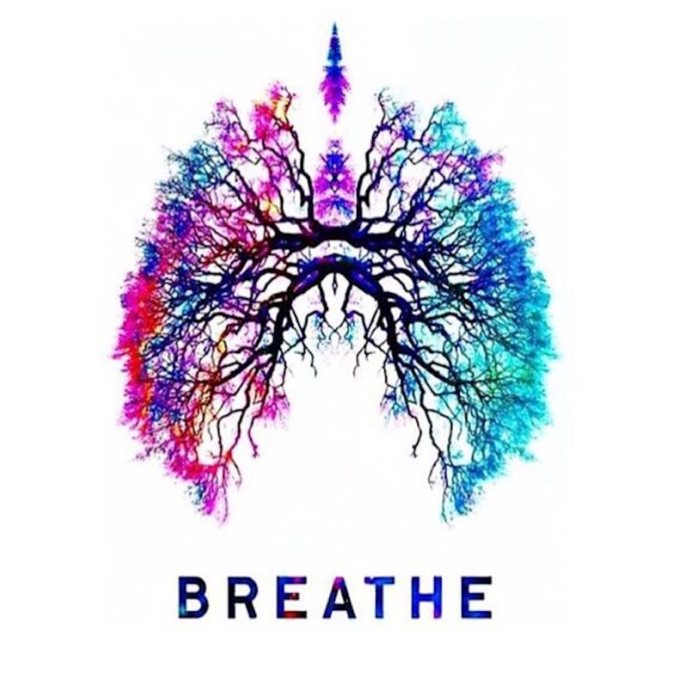 colorful drawing of lungs with the word 'breathe'
