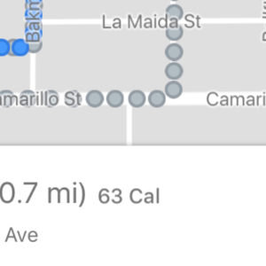 Google map route that shows calories burned