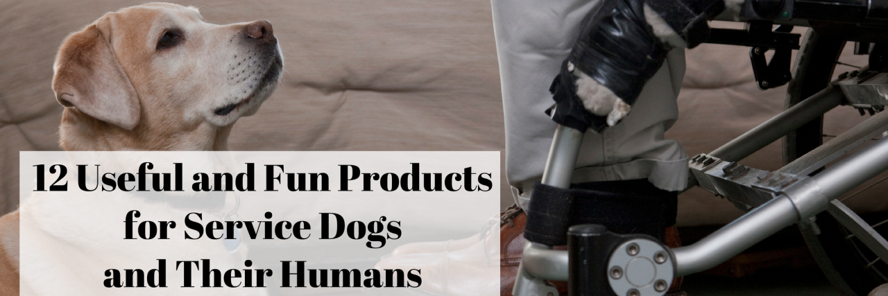 Service dogs - list of useful and fun gear.