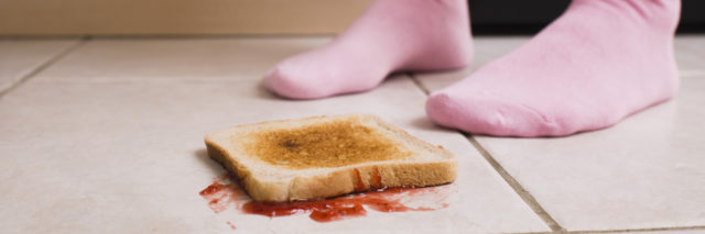 toast on the floor