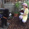 photo of a woman in a farmer costume riding a tractor, and photo of a woman dressed as Jane from Tarzan with her service dog dressed as a gorilla