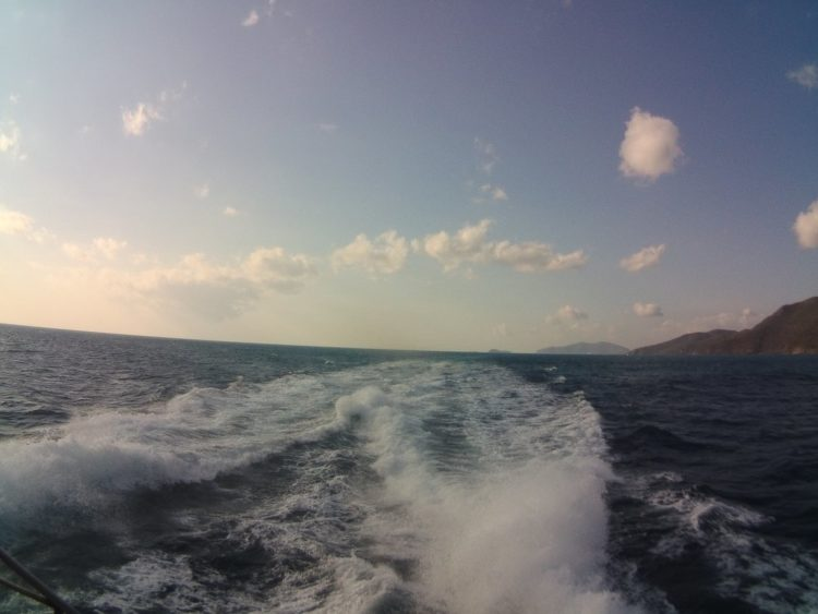 sea and sky off the back of the boat in austrailia