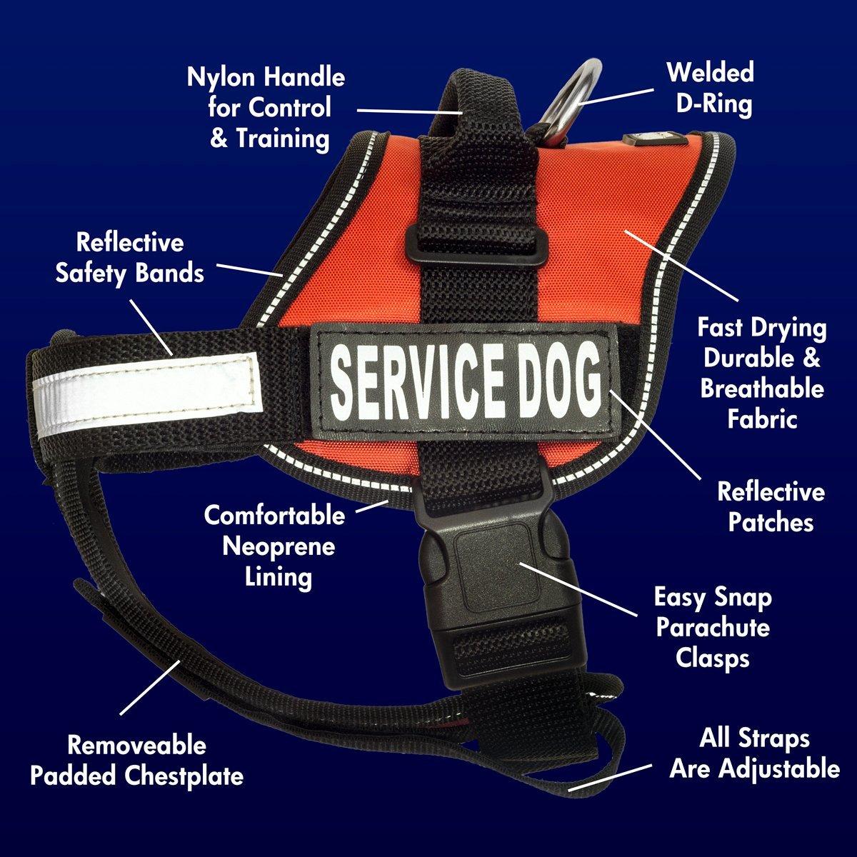 Red service dog harness with reflective band.