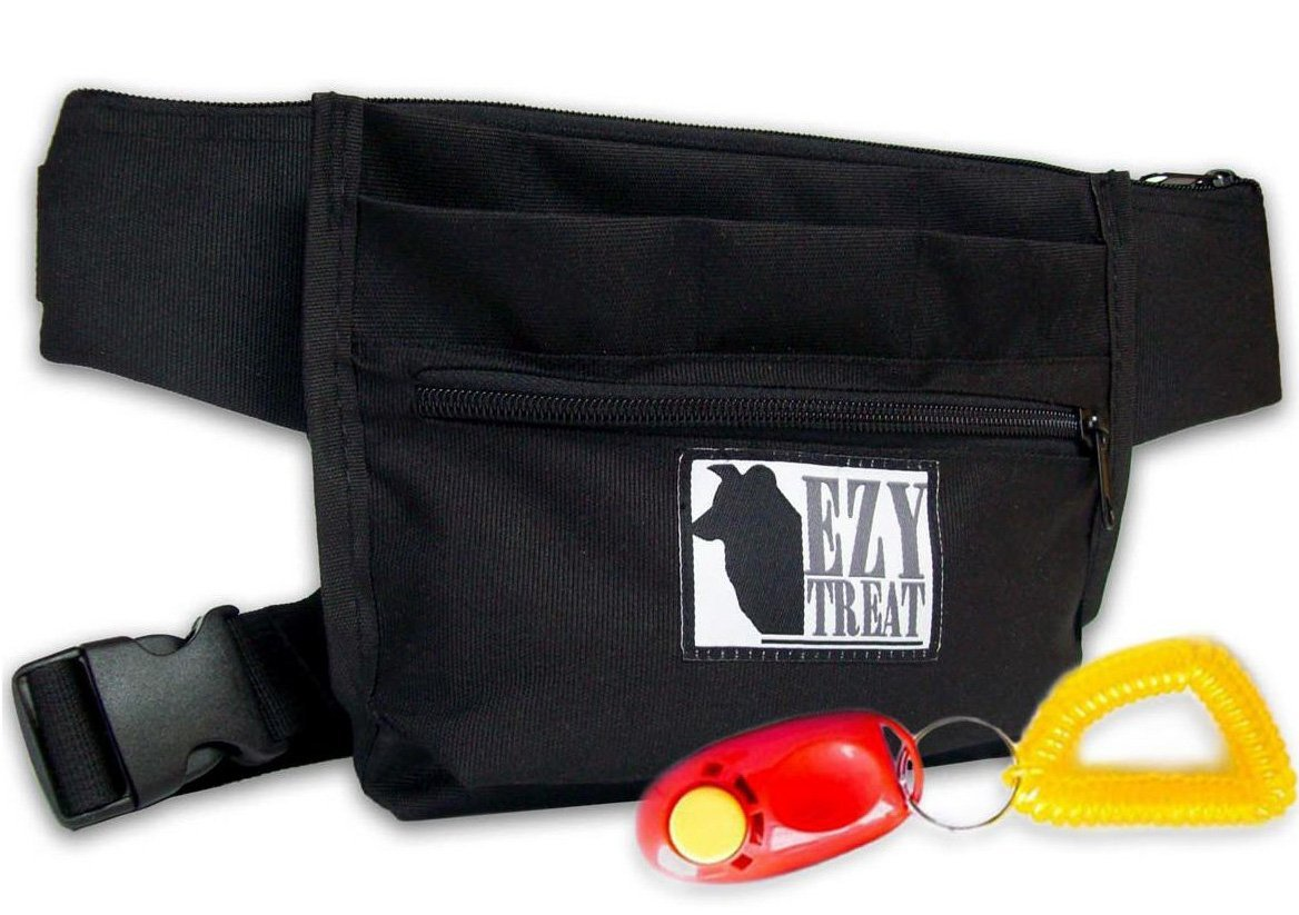 Treat bag for service dog training.