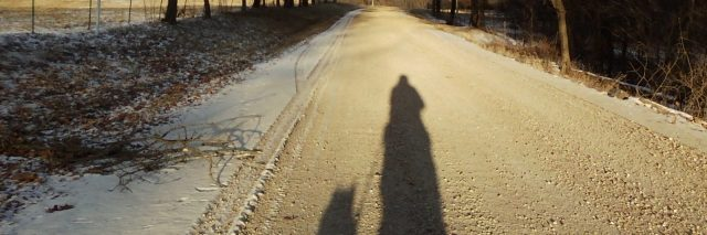Going for walks with my service dog.
