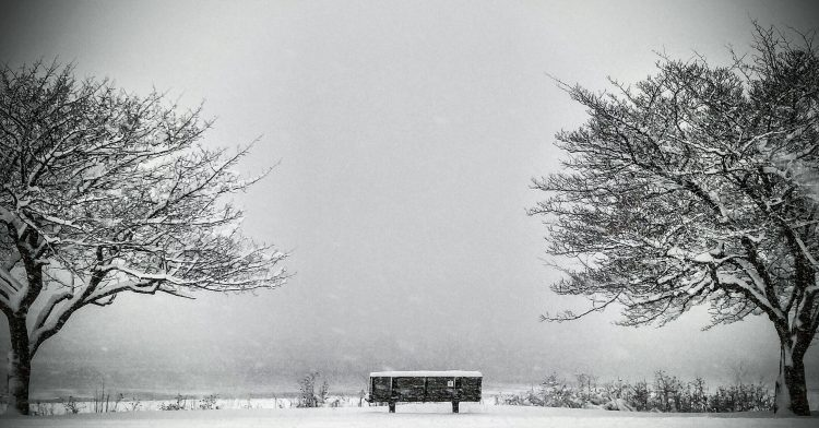 bench outside in the winter