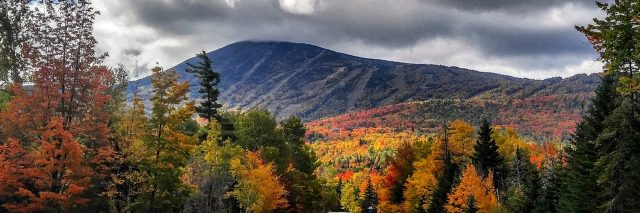road leading through forests and mountains in maine with fall foliage