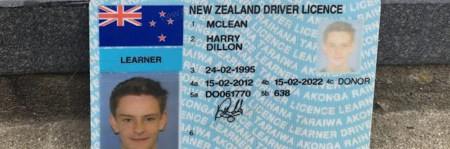 Harry's Driver's License