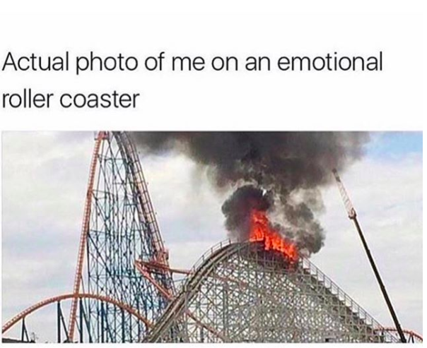 Memes That Perfectly Describe Living With Anxiety During The - 29 photos that perfectly sum up how your life is going