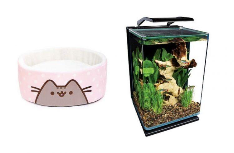 pink cat bed and small aquarium tank