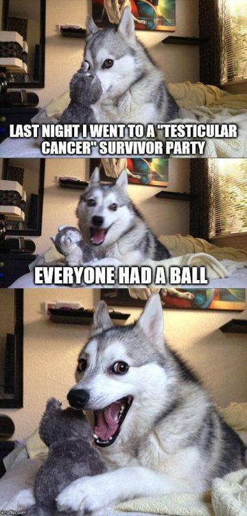 dog ball testicular cancer meme