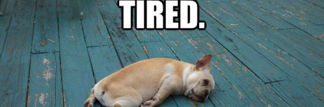 tired just tired meme feature