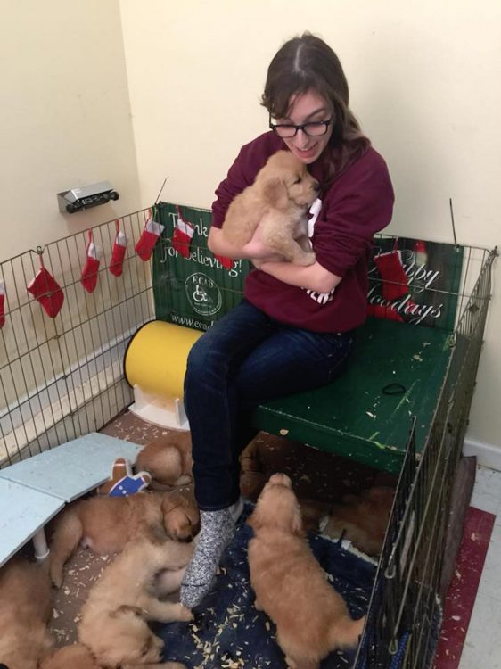 girl meeting puppies in training to be service dogs