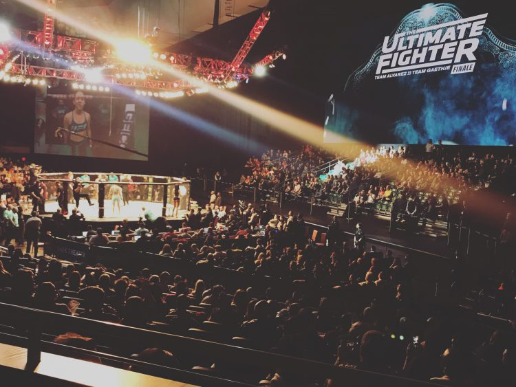 Ultimate Fighter Finale Arena
