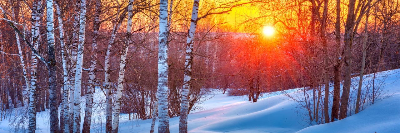 winter landscape with a sunset