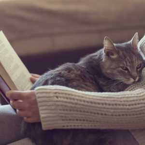 Woman reading book with cat on lap.