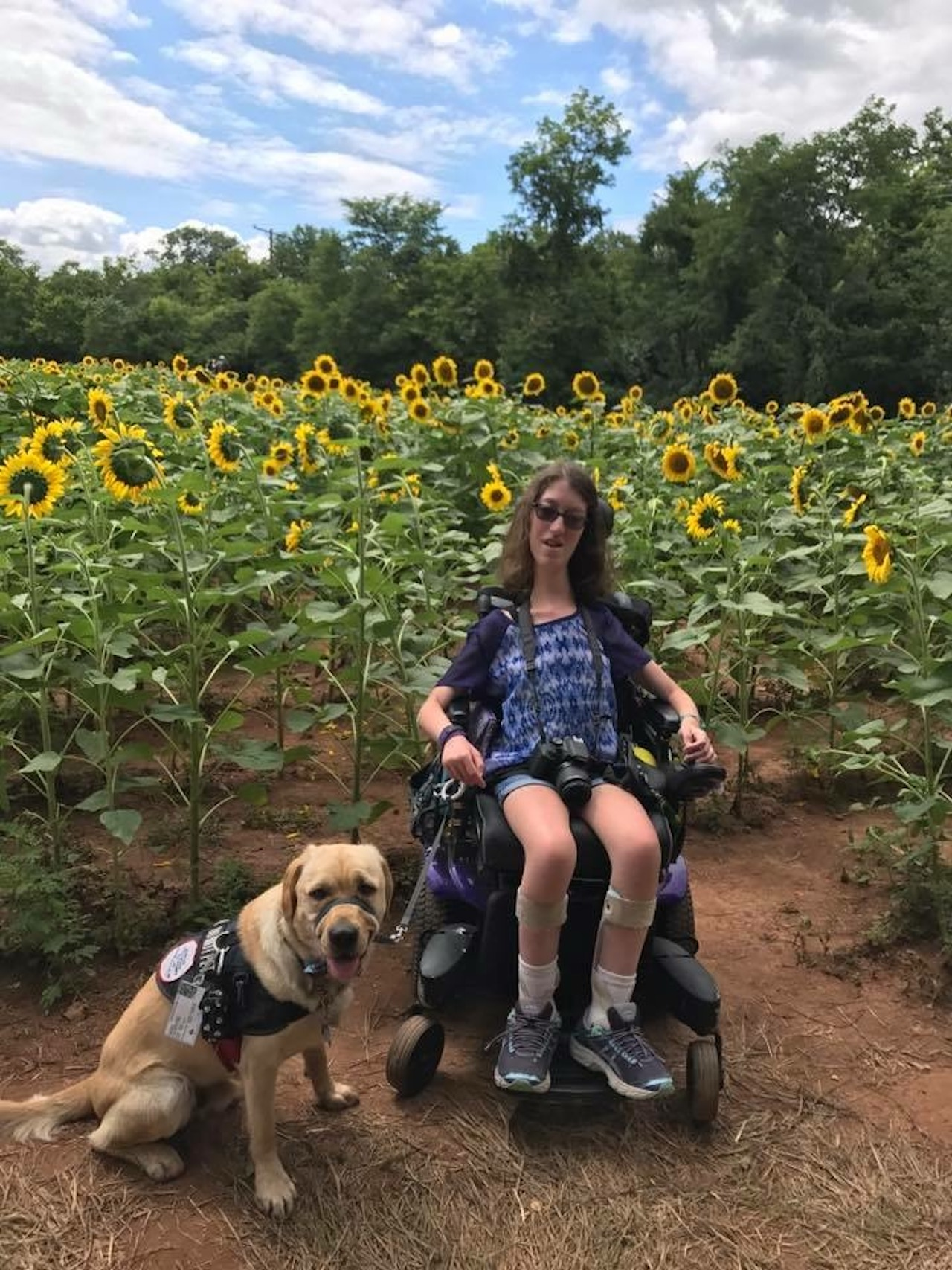 a woman with her service dog in a sunflower field