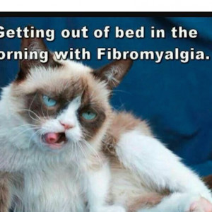 meme of tired cat with caption getting out of bed in the morning with fibromyalgia
