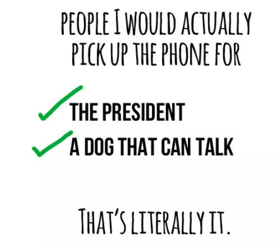 phone call the president meme
