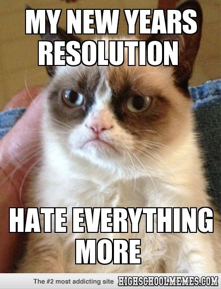 grumpy cat new years resolution meme
