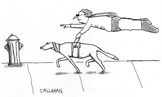 Cartoon of a guide dog leading a blind Superman as he flies just above the sidewalk.