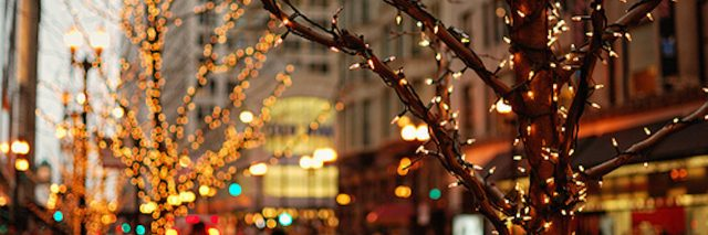 christmas lights on trees in the city