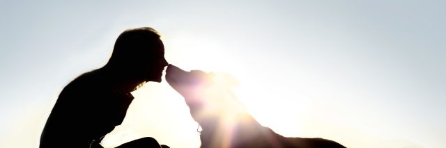 silhouette of a happy young woman is sitting outside at sunset lovingly kissing her large German Shepherd mix breed dog.