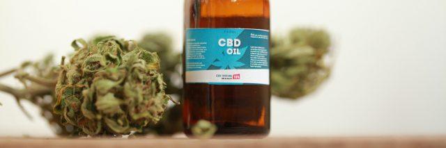 cannabis and CBD oil