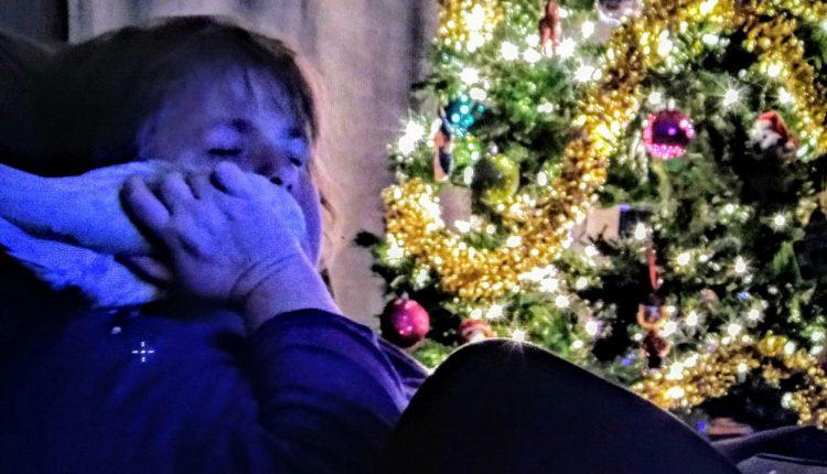 Taz and the author near a christmas tree