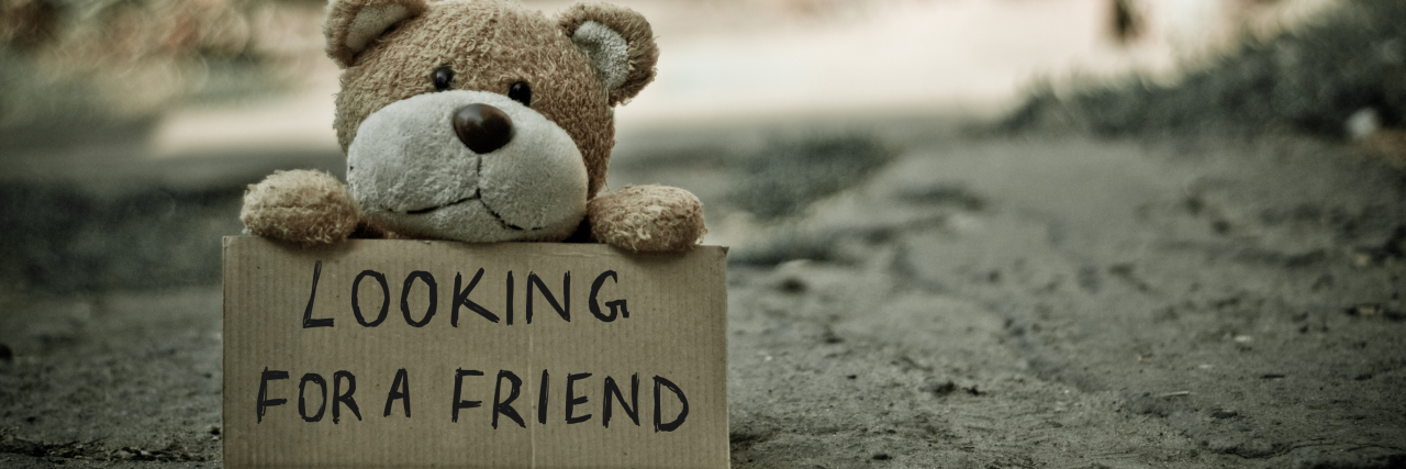 teddy bear sitting outside holding a sign that says 'looking for a friend'