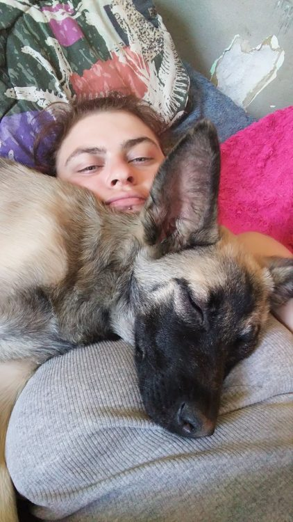 woman lying in bed with dog on top of her