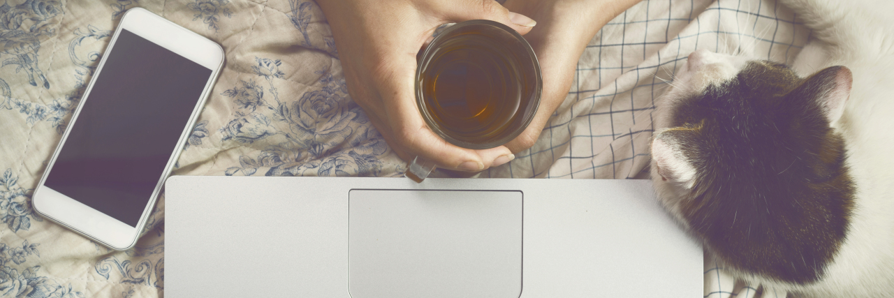 Top view image of woman hands on her bed using a laptop while drinking tea and petting a cat.