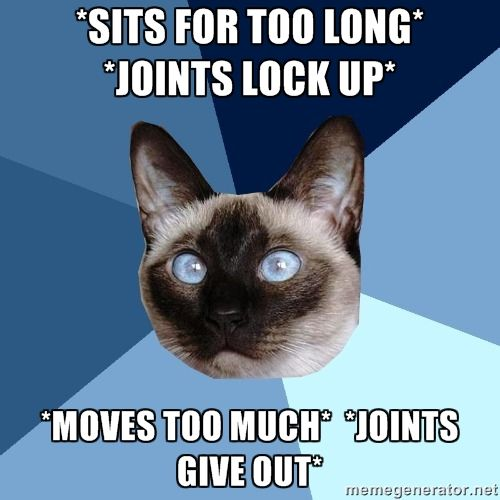 cat meme with text sits for too long, joints lock up. moves too much, joints give out