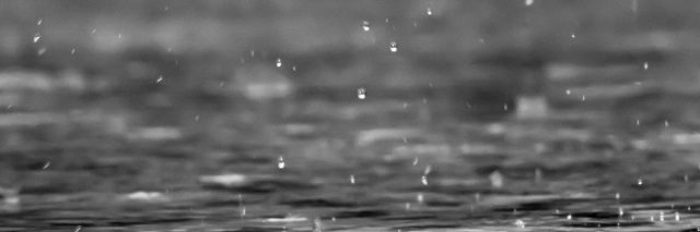 close up of rain in black and white