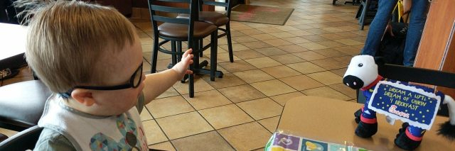 Little boy with Down syndrome looking at cow toy at Chick-Fil-A