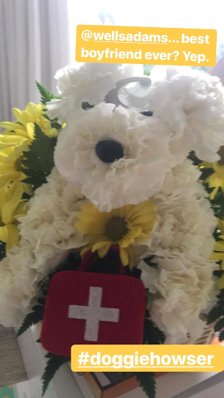 sarah hyland's get well soon flowers
