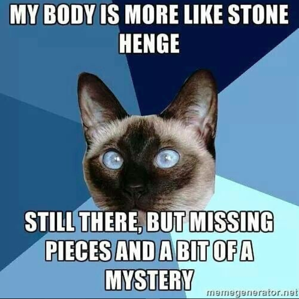 my body is more like stone henge. still there but missing pieces and a bit of a mystery